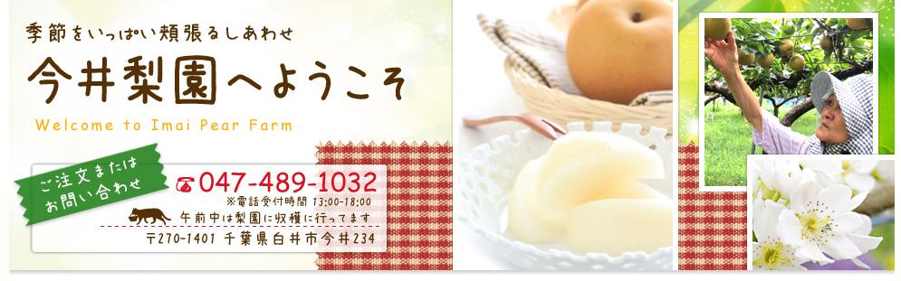 本一美味しい白井の梨を産地直送で買えるサイト