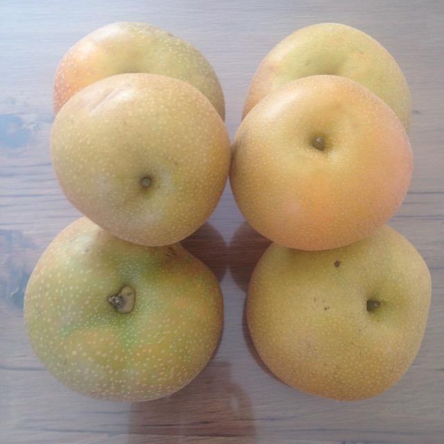 白井にある梨の直売所の『ななや』さんで買った梨(幸水・豊水)がこれまた美味しかった!