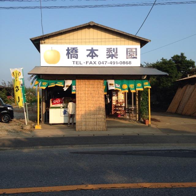 白井の梨 橋本商店