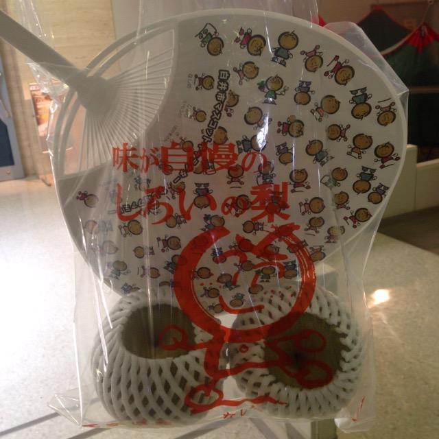 【ゆるきゃら祭り】白井市のなし坊20周年祭りに白井文化センターに行ったら想像以上に面白かった