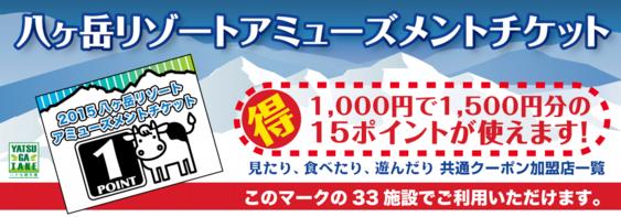 八ヶ岳リゾートアミューズメントチケット