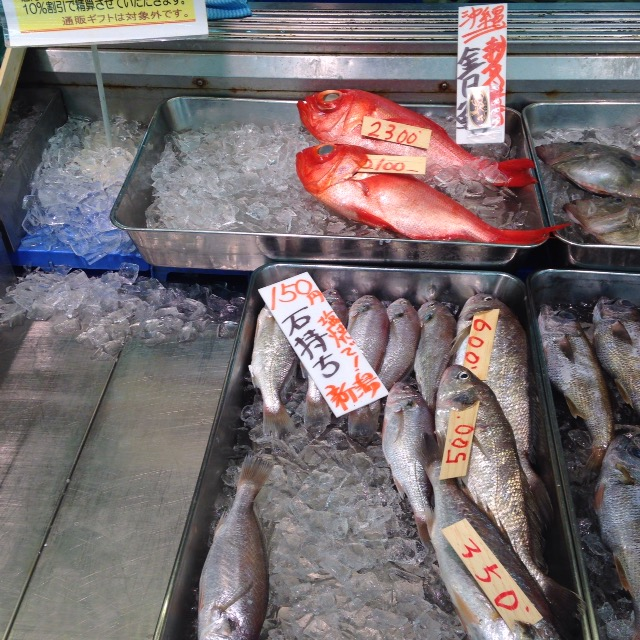 新潟から漁港直送の新鮮な魚が安く手に入れられるスーパー『生鮮市場TOP』は穴場なのでおさえておくべし!